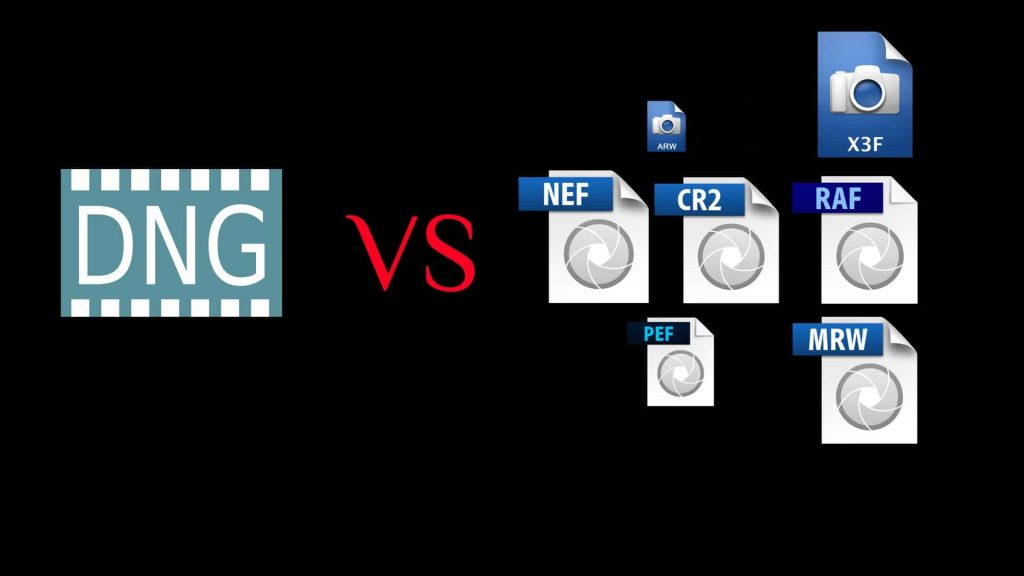 dng vs proprietary raw