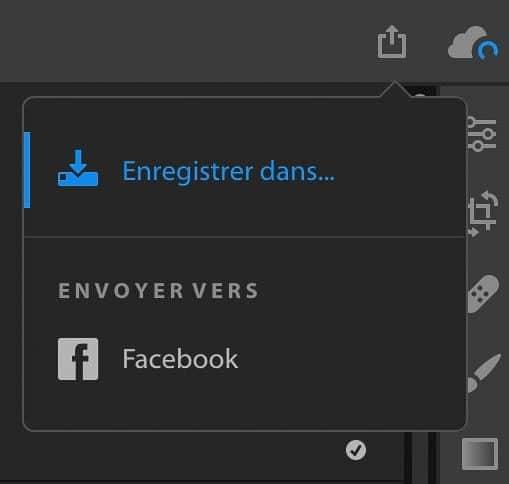Le menu d'export sur disque dure ou facebook