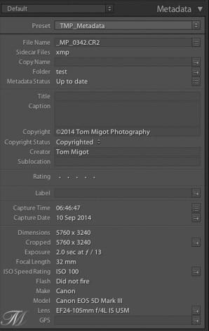 Metadata panel in Adobe Lightroom
