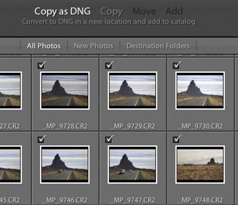 Selectioner la copie en tant que DNG dans le panel d'importation dans Adobe Lightroom
